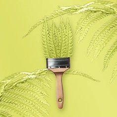 trendfarbe cream sch ner wohnen farbe tapeten pinterest. Black Bedroom Furniture Sets. Home Design Ideas