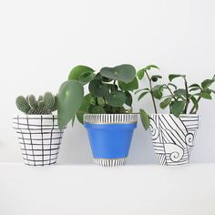 Items similar to Sophisticated Blue Stripe Plant Pot - on Etsy Painted Plant Pots, Painted Flower Pots, Pot Plante, Indoor Planters, Pottery Designs, Ceramic Design, Types Of Plants, Terracotta Pots, Clay Pots