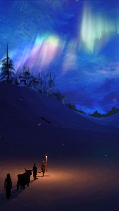 Winter Night North Pole Sky iPhone Wallpaper - iPhone Wallpapers
