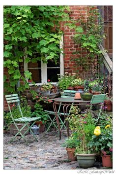 3 Enhancing Tips AND Tricks: Creative Garden Ideas Money garden ideas pots fun.Backyard Garden Pergola Trellis easy home garden ideas. Small Courtyard Gardens, Small Courtyards, Outdoor Gardens, Garden Nook, Garden Spaces, Cacti Garden, Garden Beds, Backyard Ideas For Small Yards, Vintage Garden Decor