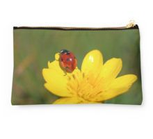 Pouch, ladybug photographic image, In stock