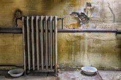 1X - Old radiator by Gerd Moors