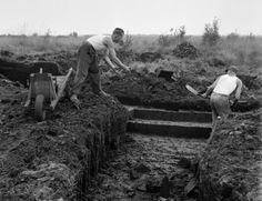 Turfgraver werpt turf naar de afkruier, de Peel (ca. 1948)....Martien Coppens.