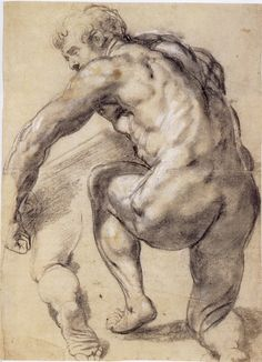 Peter Paul Rubens, Kneeling Male Nude Seen from Behind, ca. Black chalk heightened with white, 52 x 39 cm. The Museum Boijmans Van Beuningen, Rotterdam. Human Figure Drawing, Guy Drawing, Life Drawing, Figure Drawings, History Of Drawing, Annibale Carracci, Ancient Greek Sculpture, Silverpoint, Baroque Art
