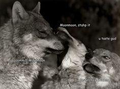 Tumblr Moon Moon the Wolf | Moon Moon Wolf Comic