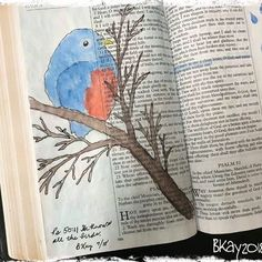 Ps - He knows all the birds. Scripture Art, Bible Art, Bible Journaling For Beginners, New Bible, Illustrated Faith, Journal Inspiration, Psalms, Hand Lettering, Art Projects