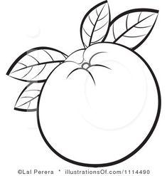Clipart Outlined Orange Fruit