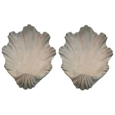 Pair of Modern Scallop Shell Wall Lights, Antiqued Plaster | From a unique collection of antique and modern wall lights and sconces at https://www.1stdibs.com/furniture/lighting/sconces-wall-lights/