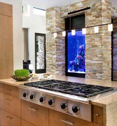Inviting living room designs with fish tanks Interesting fish tank living room ideas for kitchen room with stove in front of aquarium plus pendant lamp design idea aquarium theme ideas. aquarium in living room. Fish Tank Design, House Design, Dream Kitchen, House, Home, Countertop Design, House Interior, Small Kitchen Backsplash, Kitchen Design