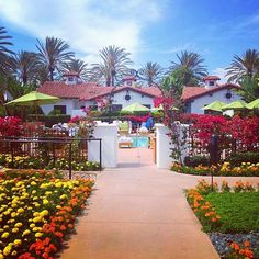 Beautiful photo of our Spa at La Costa outdoor courtyard taken by Instagrammer, @Kate Hughes. #DaySpa #OmniLaCosta