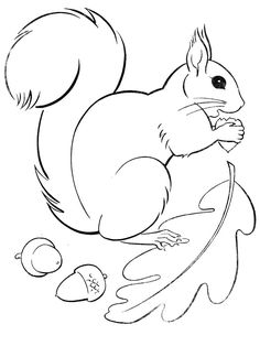 Flying Squirrel Coloring Page. Squirrel is a rodent mammal. Squirrels have a sma. - Flying Squirrel Coloring Page. Squirrel is a rodent mammal. Squirrels have a small body shape of ar - Fall Coloring Pages, Animal Coloring Pages, Printable Coloring Pages, Coloring Books, Bordado Jacobean, Squirrel Coloring Page, Flying Squirrel, Autumn Crafts, Autumn Activities