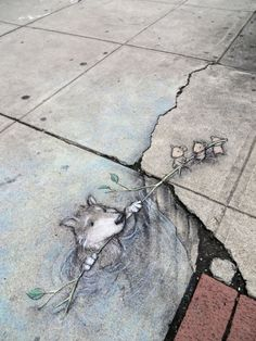 INTERACTIVE: 'Grey Wolf Rescued', Ann Arbor, Michigan, USA (artwork by illustrator and street artist David Zinn)