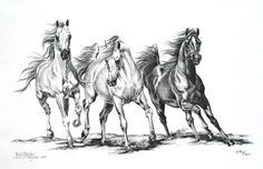 running arabian horse drawing - Google Search