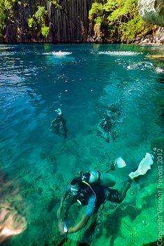 Majestic Diving Photography that will Give You Scuba Thirst Barracuda Lake - Palawan, Philippines