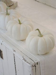 white pumpkins  do this across our mantel