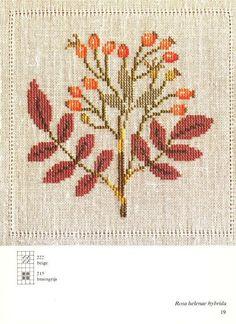 (2) Gallery.ru / Фото #3 - Cross Stitch Pattern in Color - Mosca