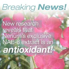 Nerium's Exclusive Extract. Patented! You can ONLY get this from #Nerium International and the results are beyond AMAZING!  CLICK HERE to start looking younger now http://yourrealresults.neriumproducts.com/