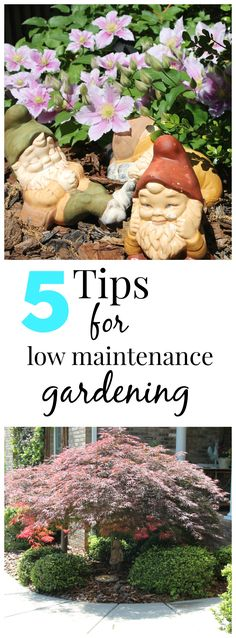 5 easy tips for low maintenance #gardening. Plus my garden tour.