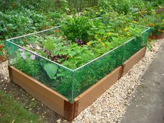Raised Bed Rabbit Fence