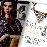 The new Cookie Lee Jewelry 2014 Fall/Winter catalog has arrived.  Happy shopping   www.cookielee.biz/msdixon