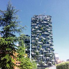 // #milano #vivomilano #milan #aroundmilan #boscoverticale #verticalgarden #skyscreaper #portanuova #portagaribaldi #gaeaulenti #piazzagaeaulenti #milanoportanuova #design #architecture #loveitaly #whatitalyis #ig_milan #ig_italia #photooftheday #throwback #sunnyday #goodvibes #milanodavedere by ilaria_cara