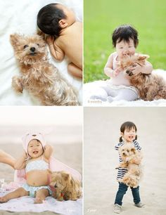 Little asian baby and yorkie awhhhhh my future  so doing this when we have kids