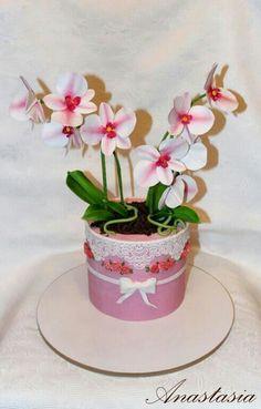 Orchids cake Woman cake Торт орхидеи