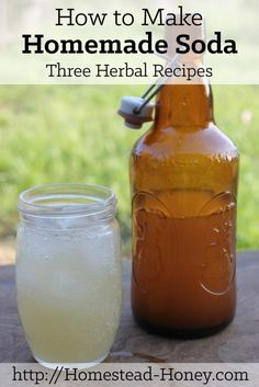 How to Make Homemade Soda :: Three Herbal Recipes Light, sweet, fizzy, and refreshing, homemade soda is the perfect ending to a hot summer day. This post will teach you how to make homemade Real Food Recipes, Cooking Recipes, Healthy Recipes, Disney Recipes, Disney Food, Smoothies, Fermented Foods, How To Make Homemade, Summer Drinks