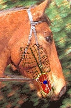 This is so neat. You gotta open it and check it out. Its 3d and shows what each bit does when u pull your reins!