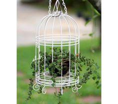 Em jardins, gaiolas podem servir de suporte para vasinhos de plantas. Uma dica é você ficar atento às cores: branco pode contrastar com o verde e criar uma atmosfera incrível.