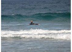 Paddling out...Bondi Beach AUS