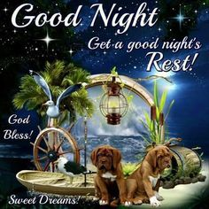 Get A Good Night's Rest night beautiful animal good night good night images good night blessings Good Night Family, Good Night Friends, Good Night Wishes, Good Night Sweet Dreams, Good Night Prayer Quotes, Cute Good Morning Quotes, Good Night Messages, Night Quotes, Good Night Thoughts