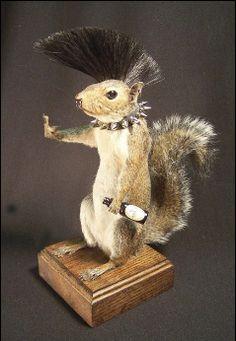 Punk Taxidermy Squirrel by Sarina Brewer - taxidermist artist Funny Taxidermy, Taxidermy Decor, Taxidermy Display, Taxidermy Bat, Taxidermy Jewelry, World Of Interiors, Cute Rats, Macabre, Natural History