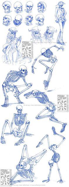 Squelette, différentes positions: