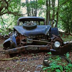 Decay: A rusting pick-up truck is pictured on the old site of Medlars Vehicle Dismantler's, near Stratton Strawless in the Norfolk countryside