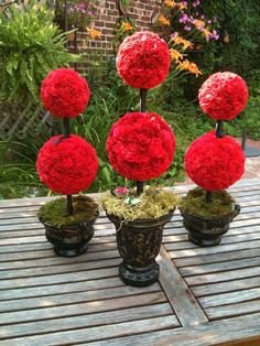 Loving these topiaries for wedding reception table centerpieces or decorations for the cake table or guestbook table! chagne the flowers to white or purple carnations or hydrangeas or roses