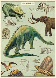 Dinosaurs Art Poster + Hanging Kit