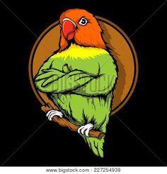 , Lovebird Parrot Sitting On The Wooden Branches . Vector Illustration Poster , Lovebird Parrot Sitting On The Wooden Branches . Vector Design, Vector Art, Logo Design, Branch Vector, Bird Logos, Shirt Print Design, Buy Posters, Love Birds, Illustrations Posters