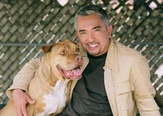Top 5 Dog Training Tips From Cesar Millan- This is a great tool! I use his methods with my own Buddy and I have seen the power or being a PACK LEADER!