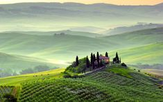 Fotobehang Podere in Toscana, Italia Toscana Italy, Turu, Widescreen Wallpaper, Travel And Tourism, Wall Murals, Things To Come, World, Outdoor, Photography Wallpapers