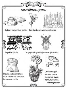 Turkish Language, Bible Coloring Pages, Olay, Children, Kids, Education, Geography, Science, Young Children