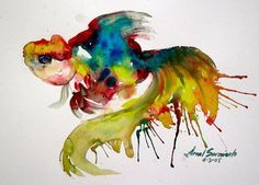 Mexican fighting fish watercolour