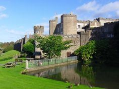 Attraction North Devon - Watermouth Castle Gardens and Family Theme Park.