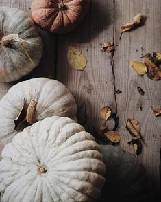 Autumn pumpkins in neutral tones. Autumn Day, Autumn Summer, Autumn Leaves, Hygge, October Country, Country Fall, Crow's Nest, Autumn Aesthetic, Fall Pictures