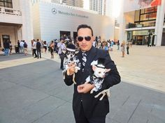 Anthony Rubio Top Pet Couturier with his muses Couture Dogs of New York Bogie and Kimba attending SS 2014 Mercedes Benz Fashion Weekl Pets, Pet Dogs, Mercedes Benz, Muse, New York, Couture, Red Carpet, Dresses, Top