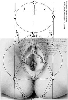 Image result for vulva sacred geometry