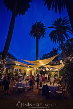 Reception with patio lights and palm trees at the French Estate in Orange, CA