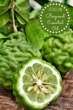 Bergamot essential oil is a lesser known citrus essential oil with many amazing uses. Come learn how to use bergamot essential oil. Bergamot Essential Oil Uses, Essential Oils 101, Young Living Essential Oils, Essential Oil Blends, Citrus Oil, Living Oils, Aromatherapy Oils, Tips Belleza, Do It Yourself Home