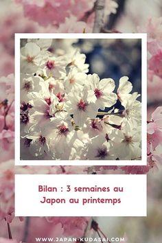 Bilan - 3 semaines de voyage au printemps au Japon #sakura #japon #printemps Takayama, Sakura, Japan Trip, Tokyo Imperial Palace