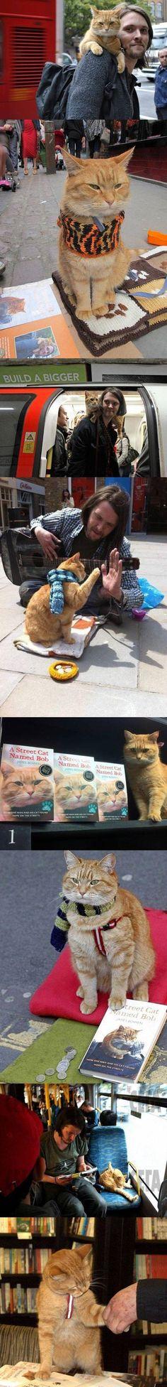 A Street Cat Named Bob | Images